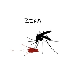 Silhouette mosquito drinking blood vector image