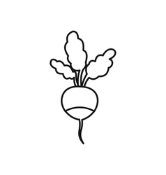 Fresh radish icon outline style vector