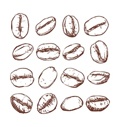 Coffee bean Isolated Hand drawn vector image