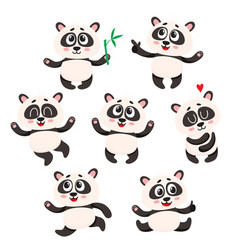 set of cute smiling baby panda characters - vector image vector image
