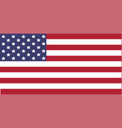 Usa flag image of usa flag the star vector