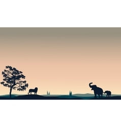 Silhouette of animals elephant lion vector