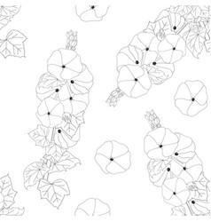 alcea rosea - hollyhocks on white background vector image