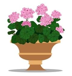 Floral arrangement in pot vector
