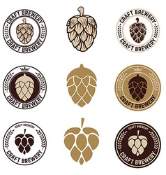 Set of craft beer labels vector