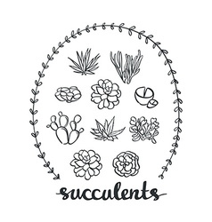 Succulent set cute plants sketched objects vector