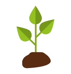 Leafs plant ecology symbol vector