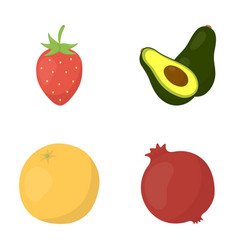 Strawberry berry avocado orange pomegranate vector
