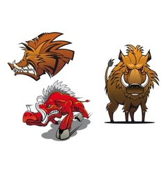 Cartoon wild boars with ruffled fur vector