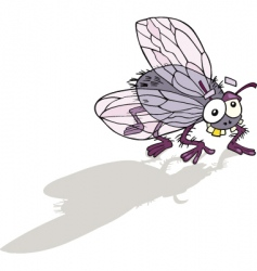 funny fly vector image vector image