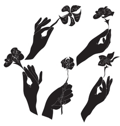 Hands with flowers set vector image vector image