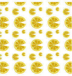 Lemon citric fruit vector