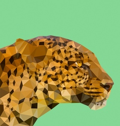 Low poly leopard vector