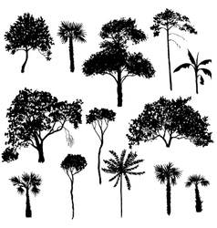 Set of deciduous trees vector