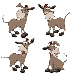 Set of burros cartoon vector