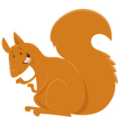 squirrel cartoon animal character vector image vector image