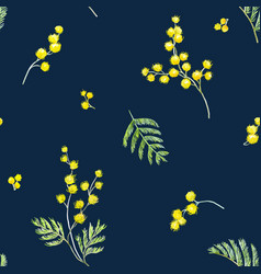 Watercolor mimosa pattern vector