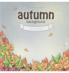 Image of autumn background with leaves chestnuts vector