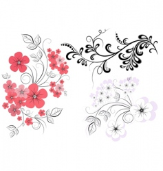 Set branches with flowers vector