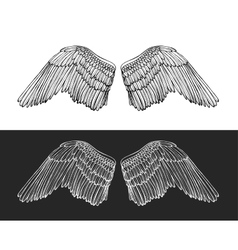 Wing angel hand draw sketch vector