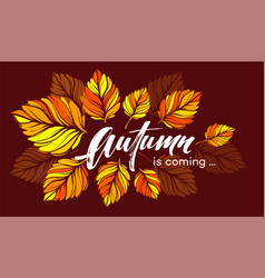 Fall background design with colorful autumn leaves vector