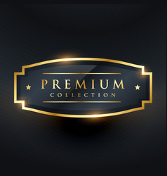 premium collection golden badge and label design vector image