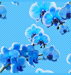 Seamless pattern with blue orchids vector