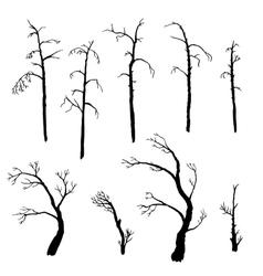 Set of winter trees vector