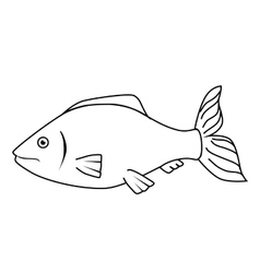 Fish sea wildlife food icon isolated vector