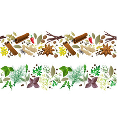 herbs and spices seamless borders vector image