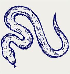 Snake sketch vector image
