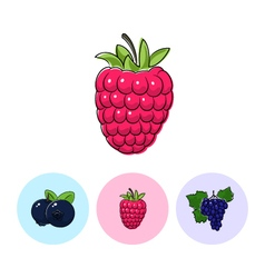 Fruit icons raspberries blueberries grapes vector