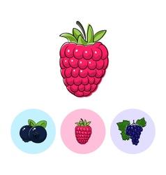 Fruit icons raspberries blueberries grapes vector