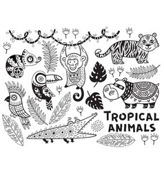 black and white set of tropical animals vector image