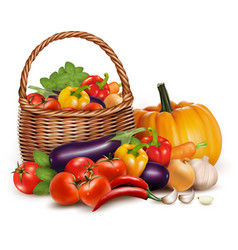 A basket full of fresh vegetables background vector image