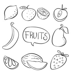 doodle of fruit hand draw vector image