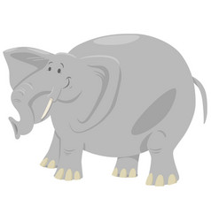 Elephant cartoon safari animal vector