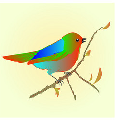 Little bird on branch spring background vector