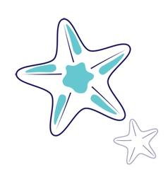 Starfish vector