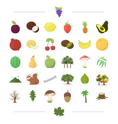 Ecology vitamins fruit and other web icon in vector