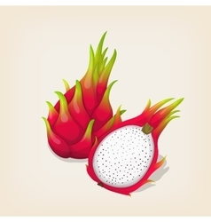 Ripe exotic dragon fruit with slice vector