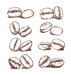 Coffee bean hand drawn vector