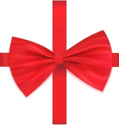 Bow on ribbon vector image