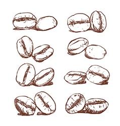 Coffee bean Hand drawn vector image vector image