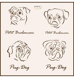 Dog pets vector