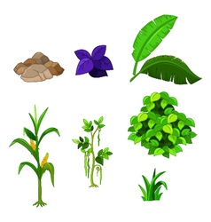various plants cartoon set for you design vector image