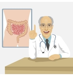 Senior doctor showing abdominal region on board vector