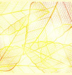 Bright orange golden abstract autumn leaf vector