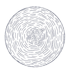 hand drawn circle with lines vector image