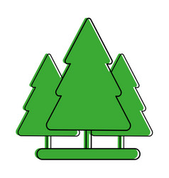Pine trees icon image vector